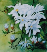 <p>Fleurs de magnolia. 20x20cm </p>