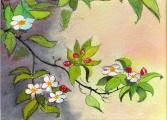 <p>Printemps. fleurs pommier 18x13cm </p>