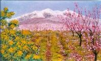 <p>canigou.printemps. 55x33 cm </p>
