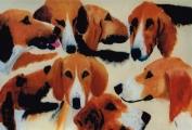 <p>chiens poitevins. 55x46cm </p>