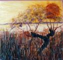 <p>étangs.soleil couchant. 60x60cm  </p>
