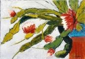 <p>fleurs de cactus. 27x19cm </p>