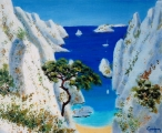 <p>Méditerranée. calanque. 46x38cm </p>