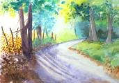 <p>Chemin en Forêt. 30x20cm. disponible  </p>