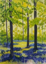 <p>Jacinthes en forêt 35x50 disponible </p>
