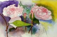 <p>Roses. 30x20cms</p>